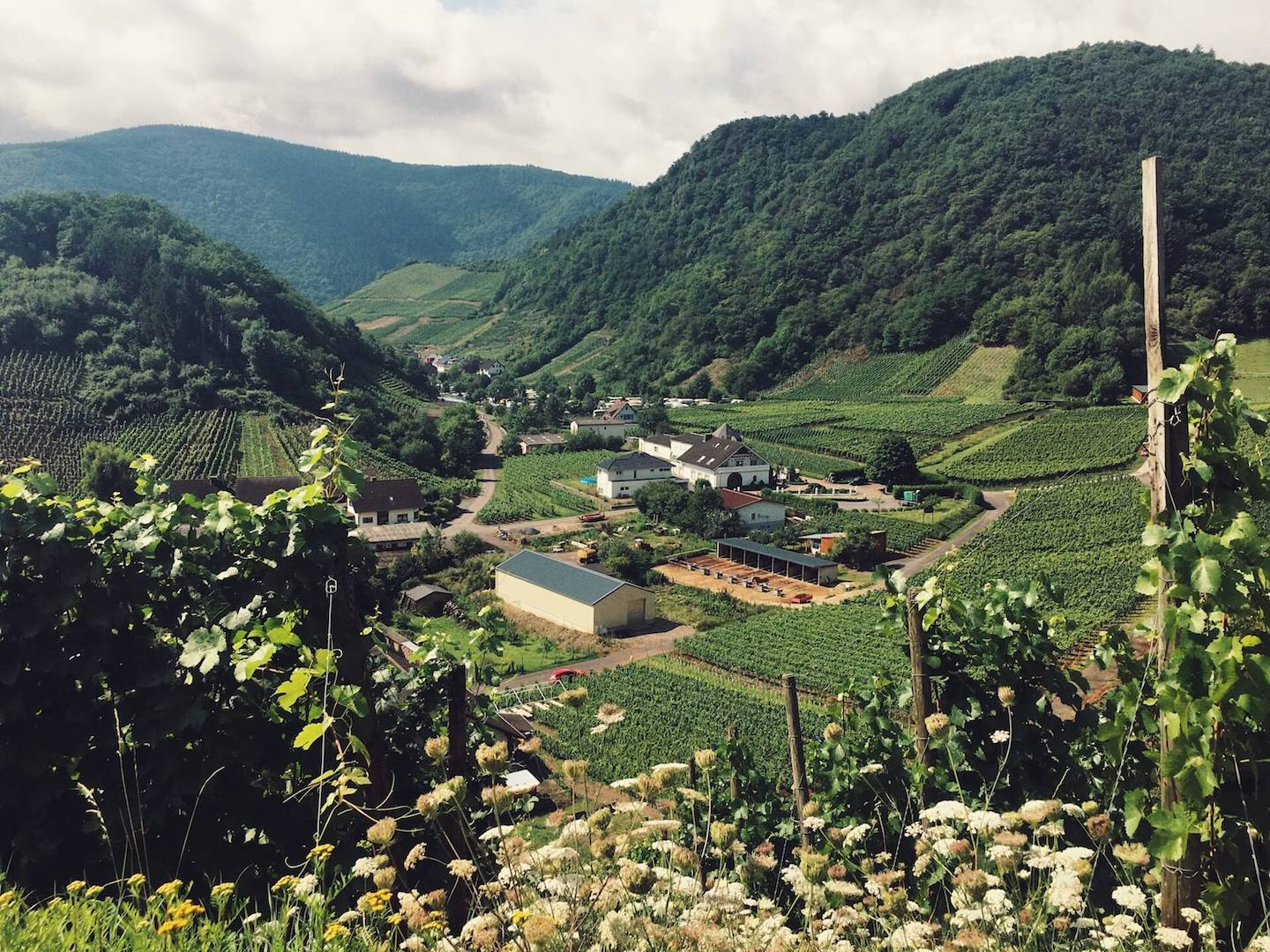 Ahr Valley Travel Guide, Germany   Moon & Honey Travel