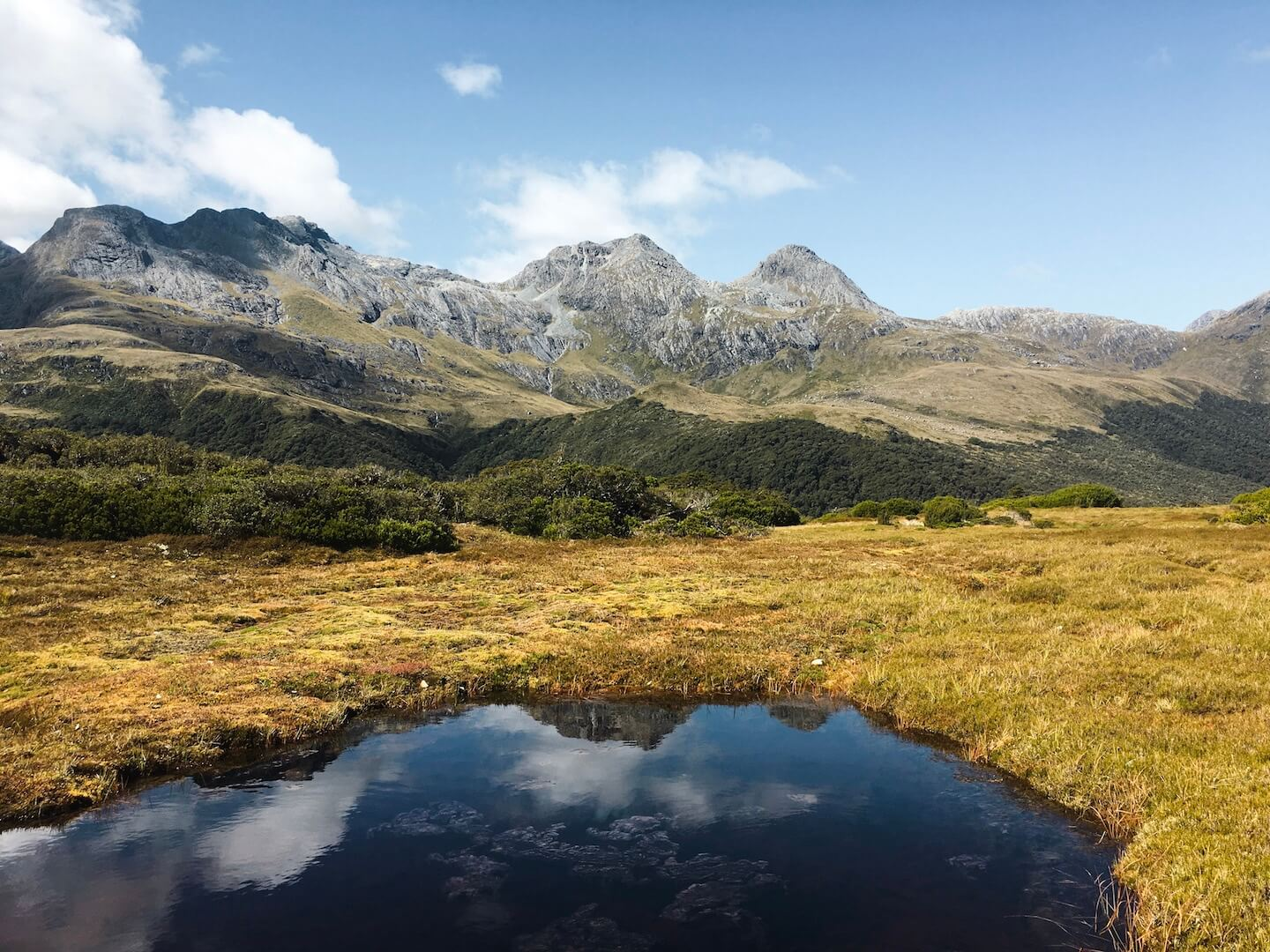 Key Summit, Fiordland, NZ Hiking Guide | Moon & Honey Travel