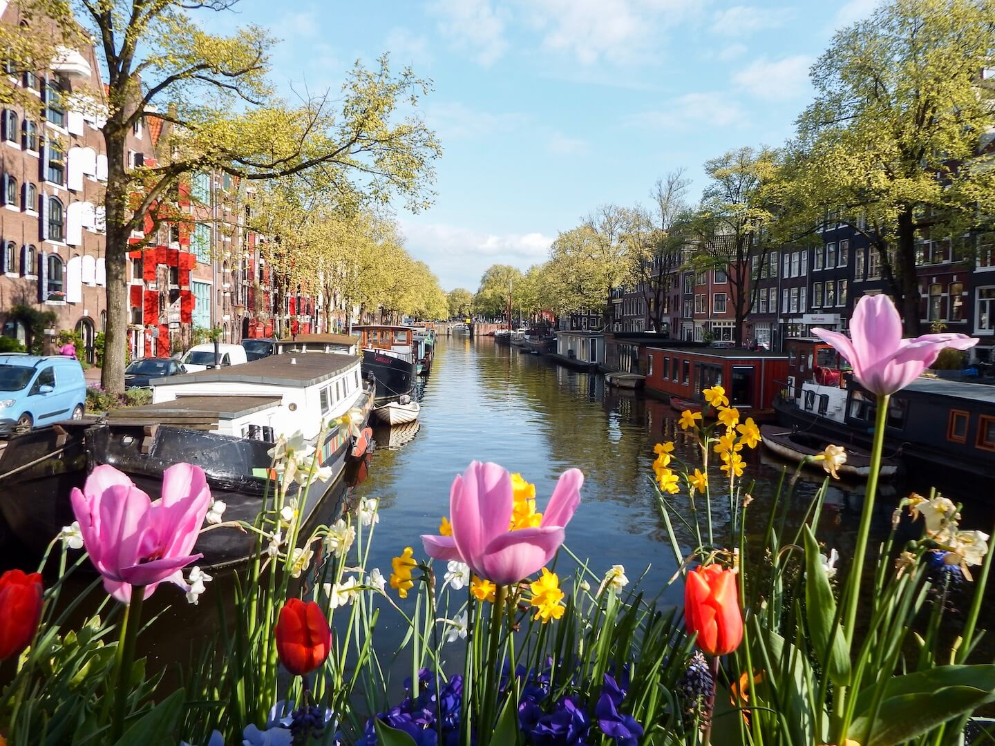 Amsterdam in Spring, Amsterdam Travel Guide | Moon & Honey Travel