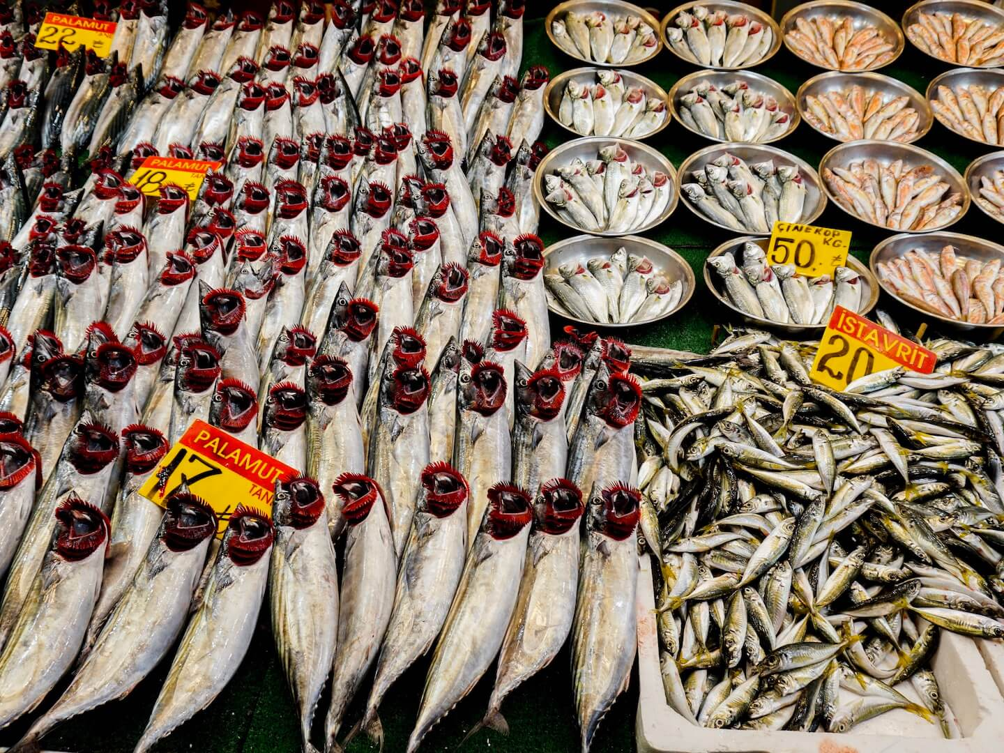 Üsküdar Fish Market - Best things to do in Üsküdar
