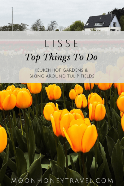 Top things to do in Lisse, The Netherlands