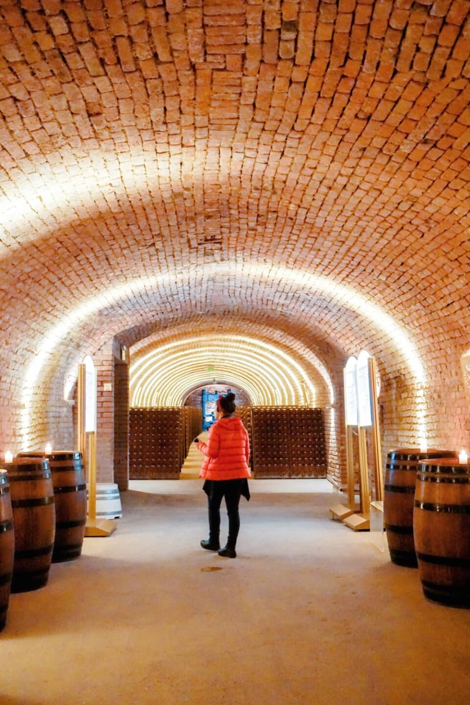 Touring the Schlumberger Cellar World, Best things to do in Vienna in January - Austria