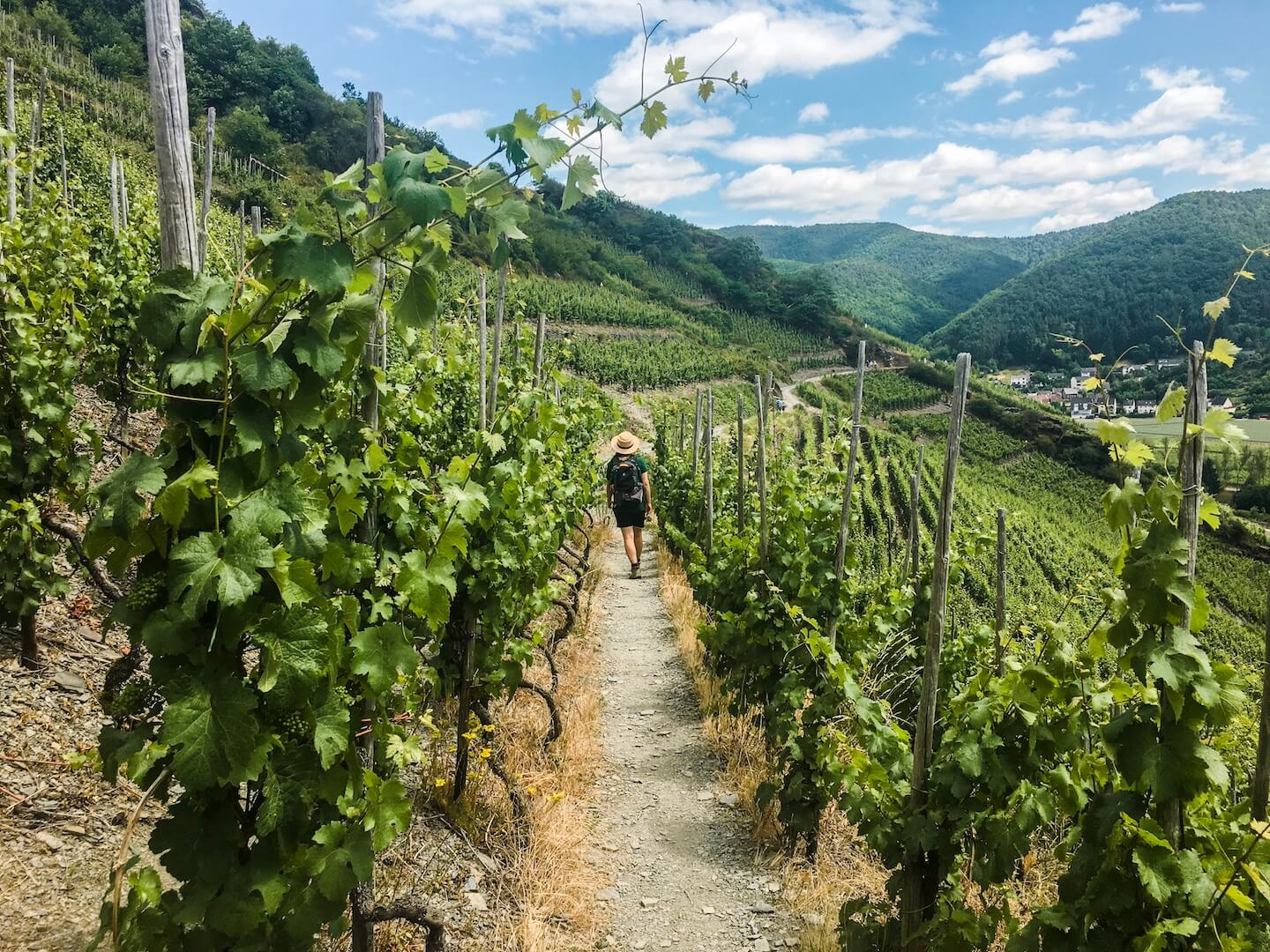 Hiking the Red Wine Trail in Germany's Ahr Valley