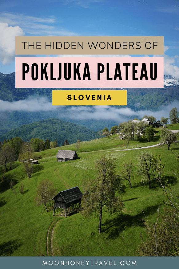 The Hidden Wonders of Pokljuka Plateau, Slovenia