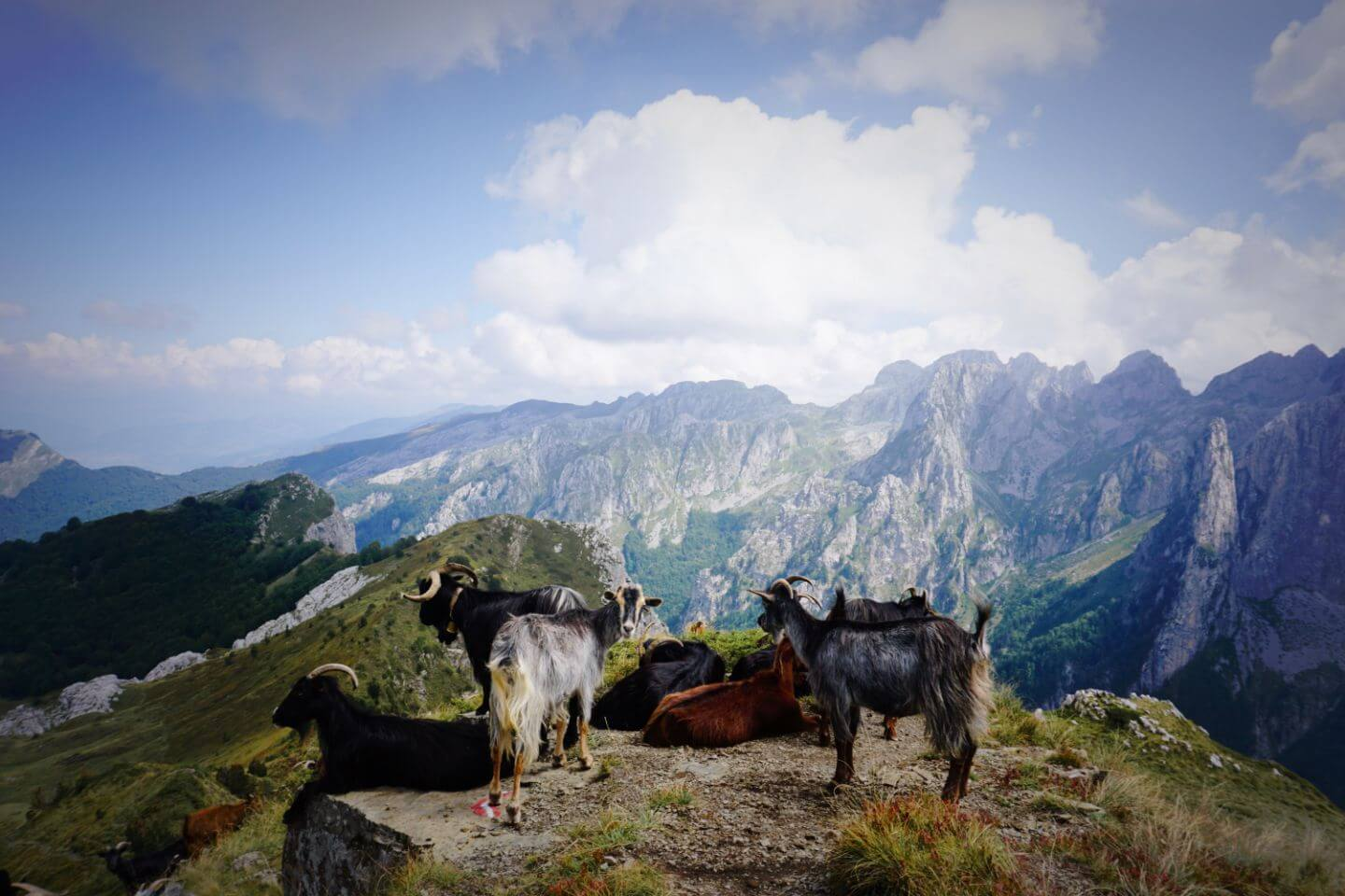 Montenegro's Accursed Moutnains, A guide to visiting Prokletije National Park